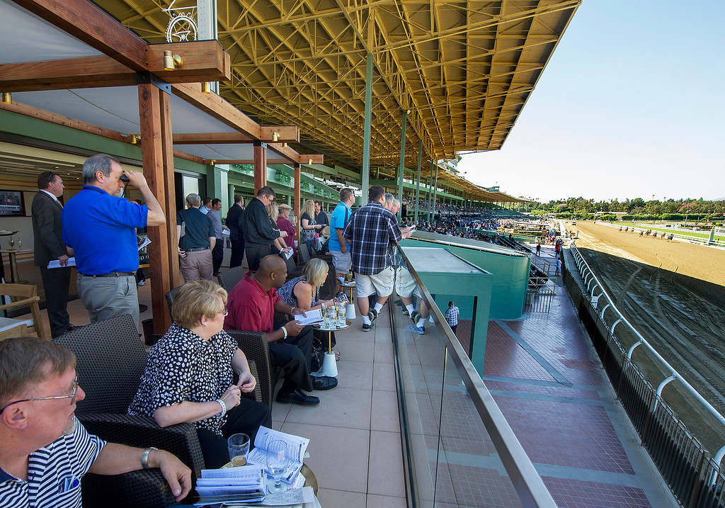 Description of . Race fans watching the horses from The Eddie Logan Suite as they approached the finish line, during the third race at Santa Anita Park on opening of 2013 Autumn Meet.  Santa Anita Park opens with new renovations to the park, including a remodeled clubhouse along the mezzanine, outdoor seating, new sports bar and balcony Friday, September 27, 2013.(Walt Mancini/Pasadena Star-News)