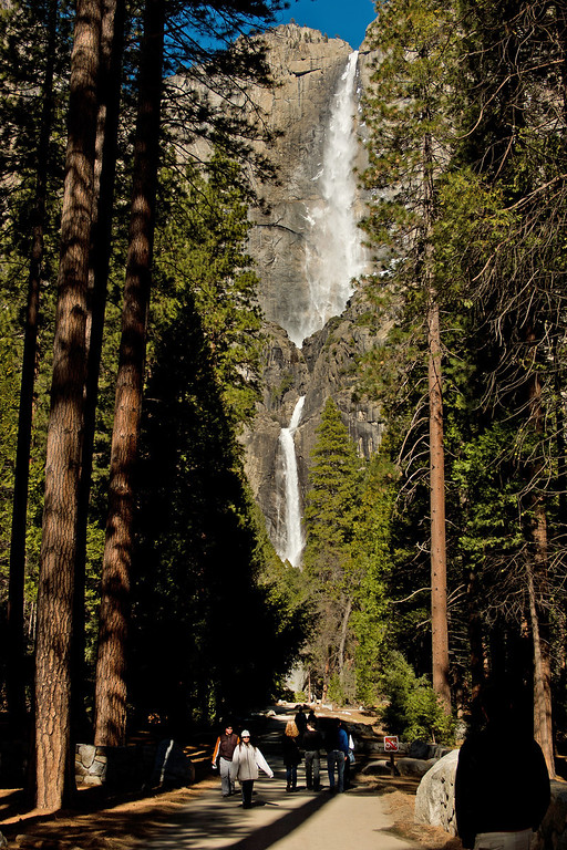 . Yosemite Falls (2,425 ft) Flows: approximately November through July, with peak flow in May.Look for the ice cone at the base of the upper fall during winter and for roaring runoff April through June. Yosemite Falls, one of the world\'s tallest, is actually made up of three separate falls: Upper Yosemite Fall (1,430 feet), the middle cascades (675 feet), and Lower Yosemite Fall (320 feet). (Photo by Walt Mancini)